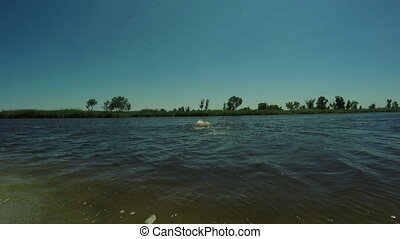 River beach with people - In river bathing people on ...