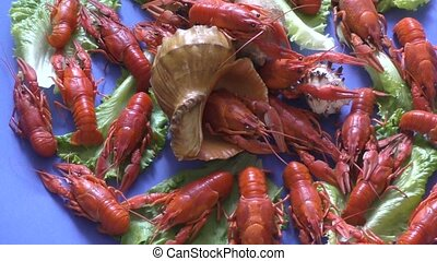 River boiled crayfish a good snack to beer