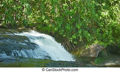 River breaks down from the ledge - forest waterfall - Video...