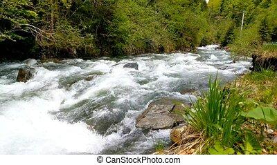 river., côté, jeûne, nature, affichage montagne