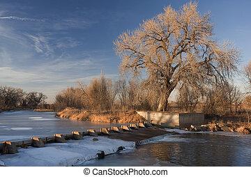 dam on the Cache la Poudre River diverting water into Evans Ditch for farmland irrigation in Colorado, winter scenery