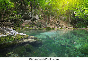 River deep in forest.
