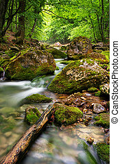 Big canyon of Crimea. River in mountain. Nature composition.