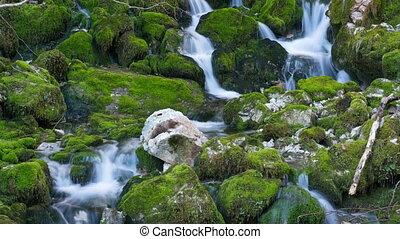 river fall among mossy stones