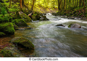 river flow in sunny forest at sunrise. stones covered with...