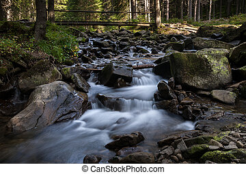 River flowing between rocks in the forest