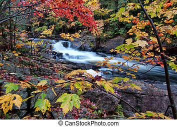 River framed by colorful autumn leaves