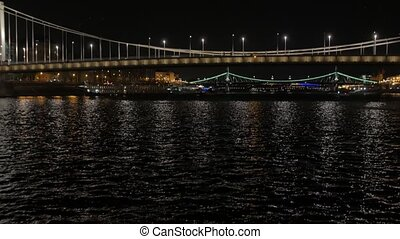 River illuminated bridge at night birds fly over Elisabeth Bridge Budapest Hungary Danube river