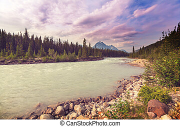 River in Canada - Athabasca River in Jasper National Park