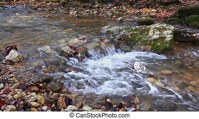 River in Caucasus mountains forest, near lake Ritsa, Abkhazia, Georgia