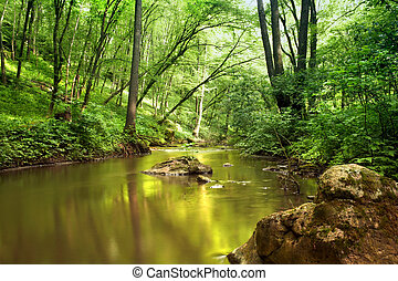 An image of a river in spring forest