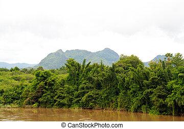 river in jungle, Thailand