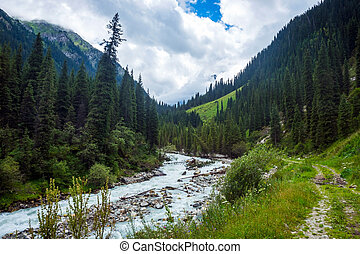 River in Karakol national park, Kyrgyzstan