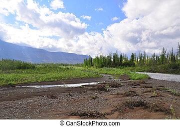 River in mountain taiga.