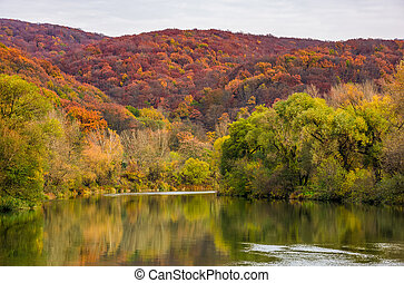 river in mountains among the forest in autumn. gorgeous...
