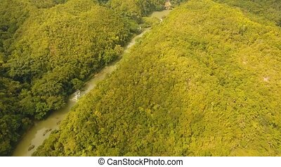 River in rainforest Philippines, Bohol. - Aerial river...