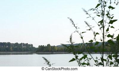 River in Siberia 1