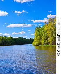 River in Spring. Nature composition