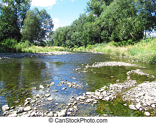 river with low level of water in summer