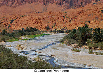 river in the desert