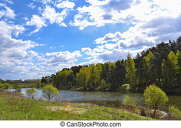 River in the forest. Russia. Moscow region