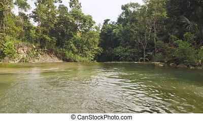 River in the jungle. Camera flight. Philippines. Bohol.