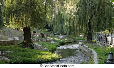 River in the park