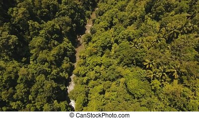 River in the rainforest Bali,Indonesia. - Aerial view of...