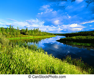 River in the scenery with green meadows, Yukon, Canada