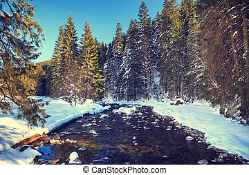 river in the winter mountain forest.