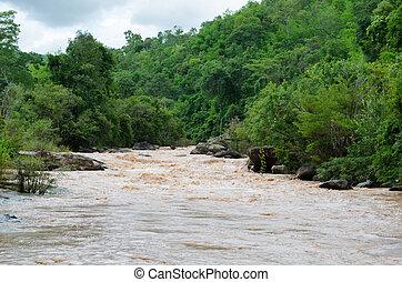 river in tropical rain forest,loei Thailand