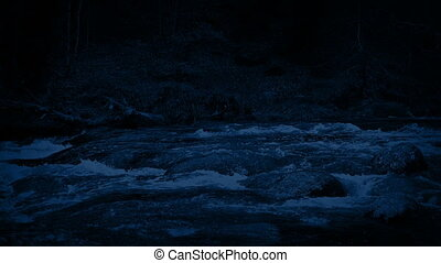 River In Wild Forest At Night - Big river flowing through...