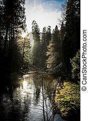 River in Yosemite National Park, USA