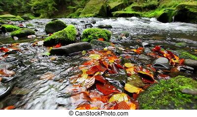 river Kamenice in autumn, Bohemian Switzerland, Czech...