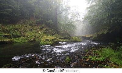 river Kamenice in autumn, Bohemian Switzerland - river...