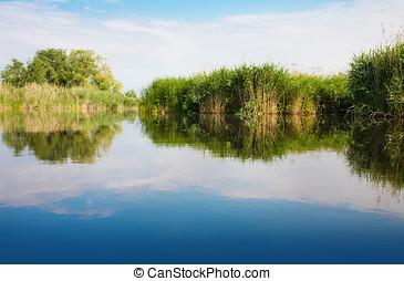 River landscape in summer sunny day