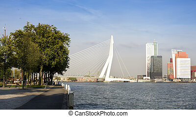 River Meuse - View on the Meuse river in Rotterdam, the...