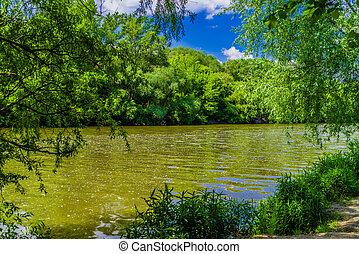 River Morava,  Slovakia
