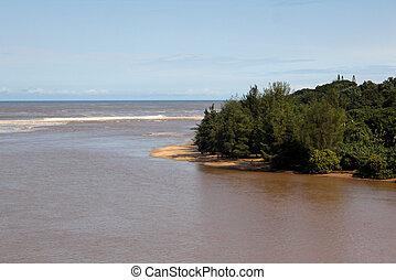 River Mouth into Sea