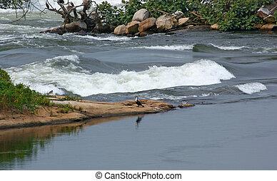 River Nile closeup near Jinja - waterside scenery showing a...