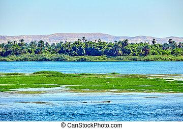 River Nile in Egypt. beautiful  landscape