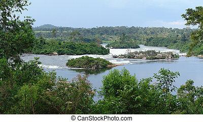 River Nile scenery near Jinja in Uganda - waterside scenery...