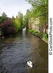 River of Begijnhof in Bruges