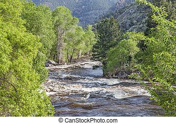Springtime whitewater of Cache la Poudre River near Fort Collins, Colorado