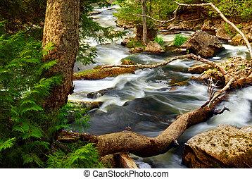 River rapids - Rocky river rapids in wilderness in Ontario,...