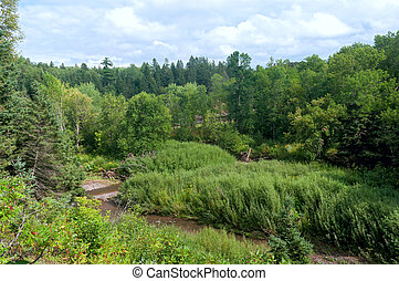 River Ravine in Jay Cooke State Park