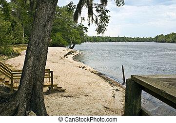 River Sandbar - A sandbar beach on the Suwannee River