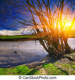 River shore and a beautiful cloudscape at sunset