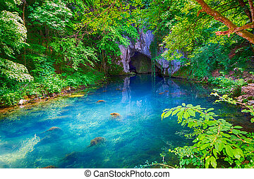 The source of the Krupaja river in Serbia, which springs in a cave - image