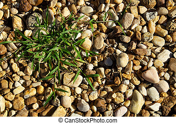 river stones with patch of grass background